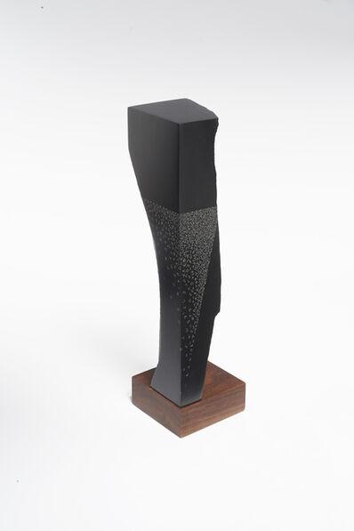Gustavo Bonevardi, 'Untitled', 2014