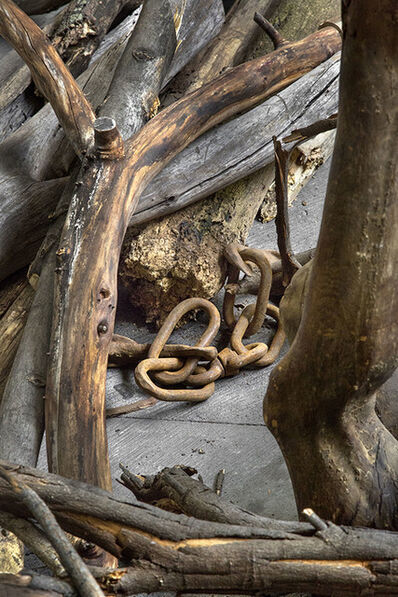 Danh Vō, 'Log Dog (detail)', 2013