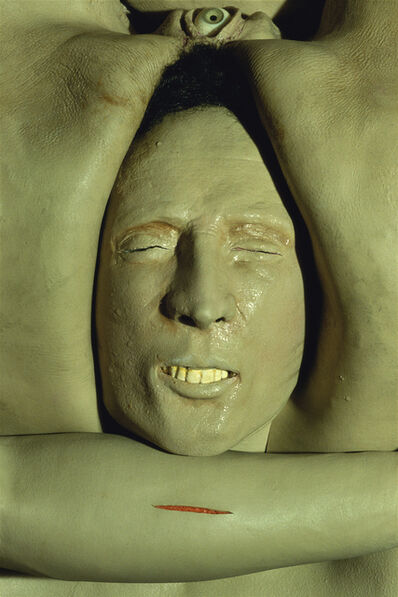 Cindy Sherman, 'Untitled #315', 1995