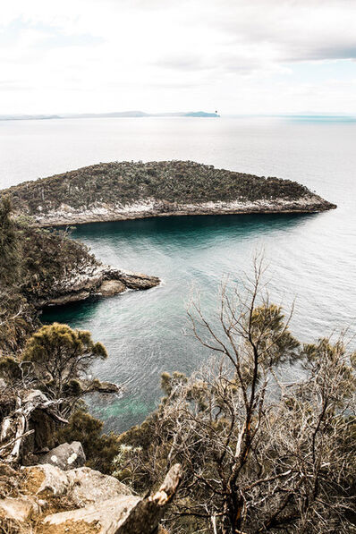 Rachael Baskerville, 'Tasmania No.3', 2019