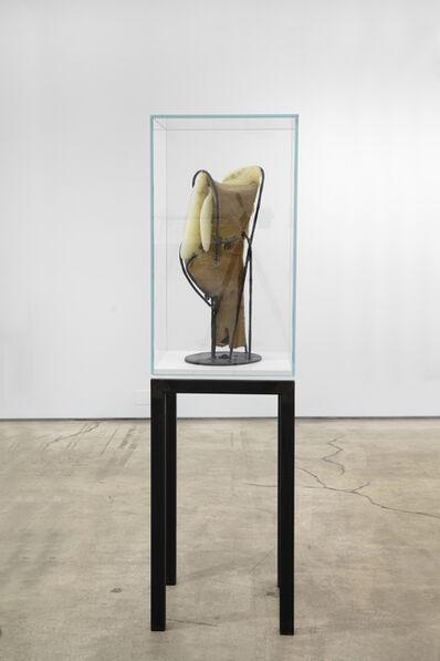 Garnett Puett, 'Untitled (Apisculptural Studies #7)', 2019
