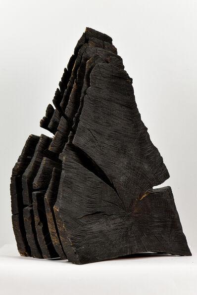 David Nash, 'Charred Oak Sheaves', 1998