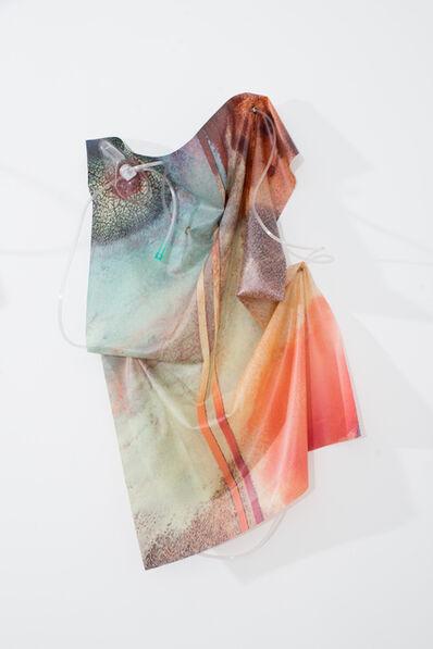 Anouk Kruithof, 'Petrified Sensibilities 01', 2017