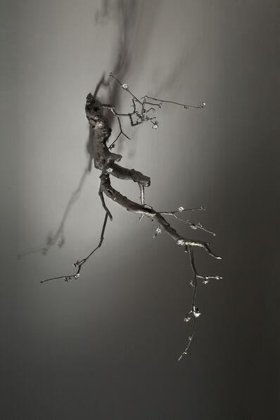 Cai Zhisong 蔡志松, 'Blossom No. 4', 2019
