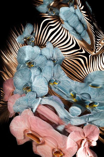 Jordan Tiberio, 'Liquid Mirrors in Tropics 1', 2020