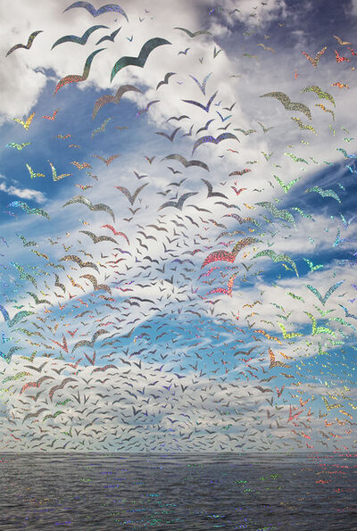 Sarah Anne Johnson, 'Blue Sky and Birds', 2017