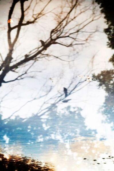 Yoshinori Mizutani, 'YUSURIKA 029', 2015