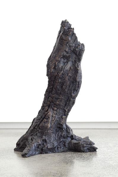 Tim Silver, 'Untitled 2', 2014