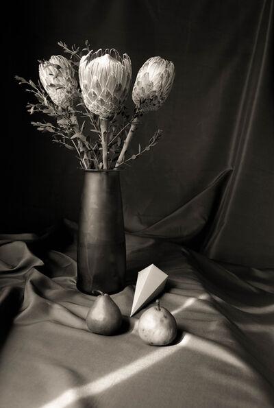 Cristina Kahlo, 'Maravillas de esta tierra', 2013