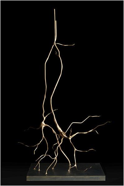 Geoffrey Dubinsky, 'Synapse', 2017