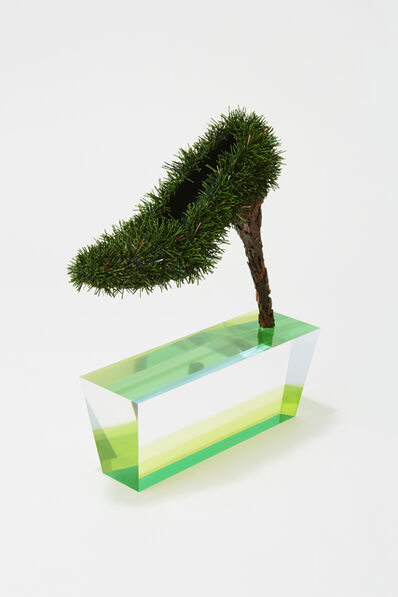 Chiho Akama, 'Garden Lovers-Orchestrated World of Nature', 2014