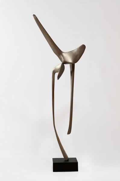 David Borgerding, 'VELAKOR', 2017