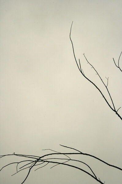 Francie Lyshak, 'Spring Branches', 2010