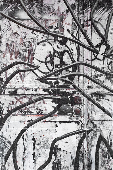 Rune Egenes, 'Corvus', 2014