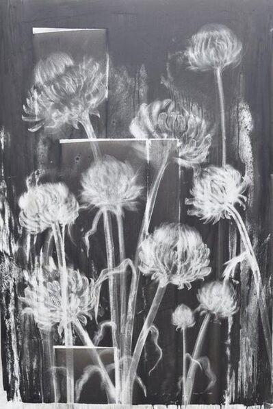 Heidi Jung, 'Artichokes', 2016