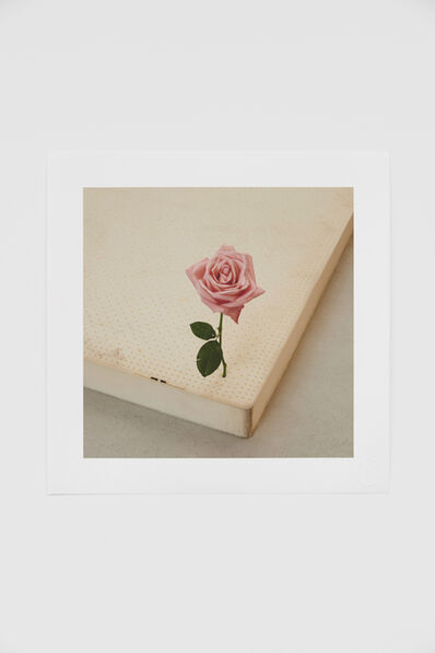 casper sejersen, 'One Perfect Rose', 2019