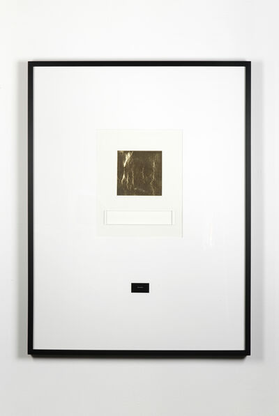 Barbara Bloom, 'Goldenis asurface colour', 1988