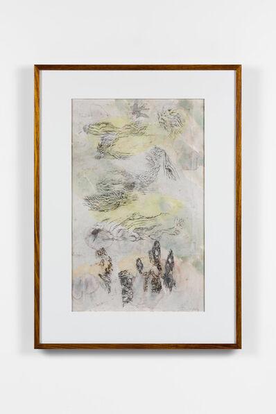 John Wolseley, 'Beetle inscape – Kamarooka Forest', 2019