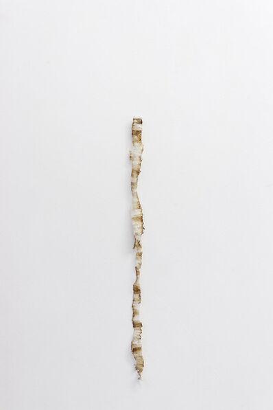 Fernanda Gomes, 'Untitled', 2012