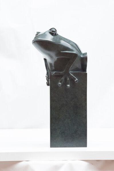Daniel Daviau, 'Frog', 2017