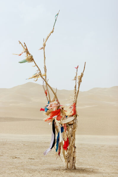 Lisa Ross, 'Fertility', 2006