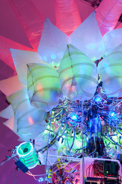 Shih Chieh Huang, '99 Plus (detail)', 2013