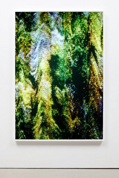 Tauba Auerbach, 'Static X', 2010