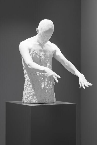 Fabien Mérelle, 'Ecorcé', 2015