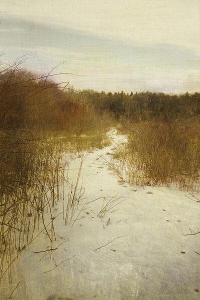 Dorothy Simpson Krause, 'Snowpath', 2006