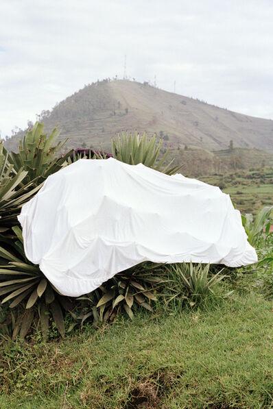 Fábio Cunha, 'White Animal', 2018