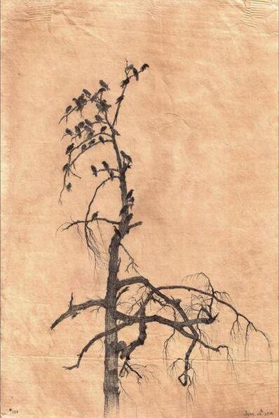 Dina Brodsky, 'Secret Life of Trees, 101', 2016