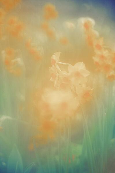 Jordan Sullivan, 'The Autumns of Spring 4', 2017-2020
