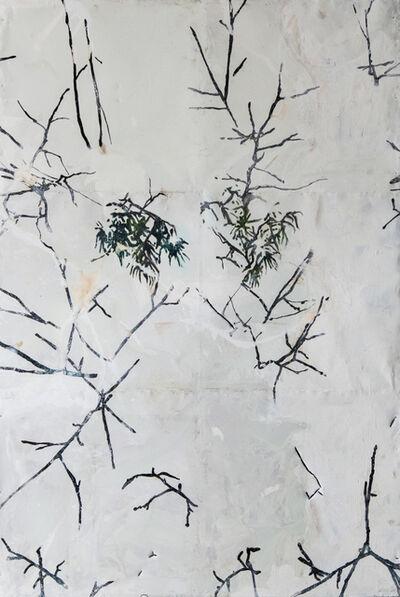 Hernan Salamanco, 'Snowy Branches', 2006