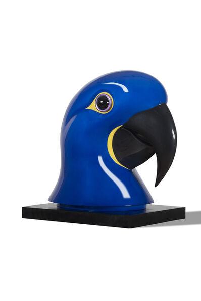 Jean-Marie Fiori, 'Hyacinth Macaw', 2015