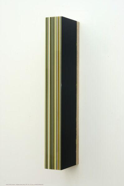 Harald Schmitz-Schmelzer, 'Farblager Schwarz Weiss Grau Gelb', 2009