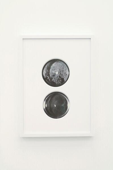 Takahiro Kudo, 'Looking at the same moon', 2015