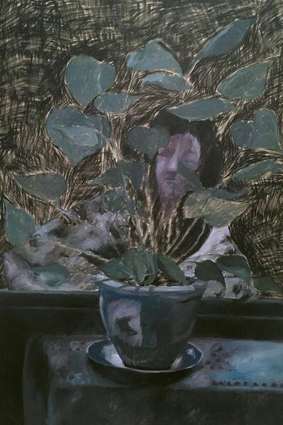 Srijon Chowdhury, 'Plant with Kahta', 2017