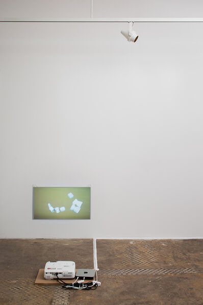 Alina Tenser, 'Locating Catch and Shake', 2013
