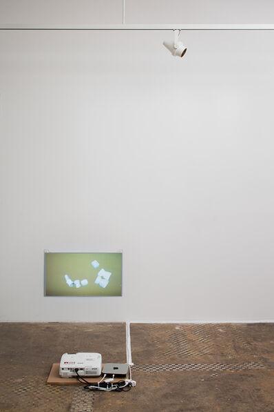Alina Tenser, 'Locating Catch and Shake', 2013