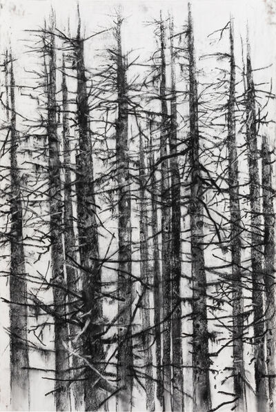 John Alexander, 'Landscape and Memory ', 2019