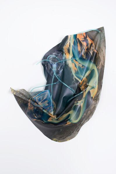 Anouk Kruithof, 'Petrified Sensibilities 13', 2017