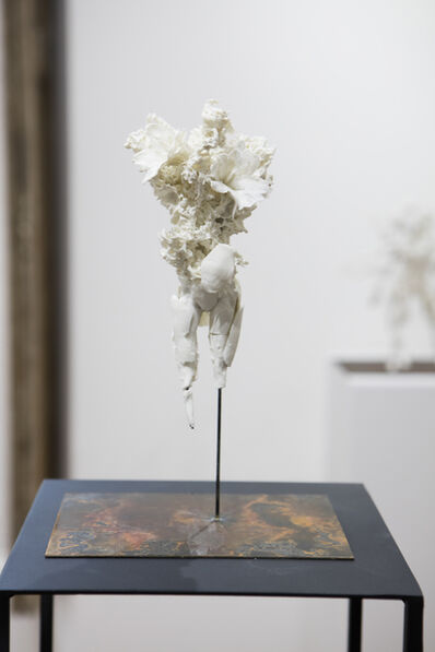 Samuel Yal, 'Noevus - Lichen III', 2016