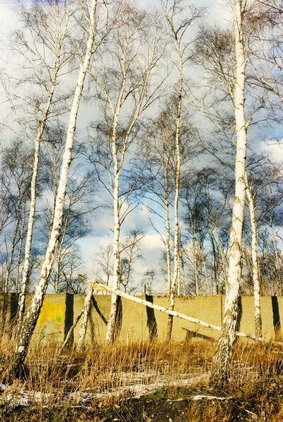 Jitka Hanzlová, 'Untitled (North/South)', 1998