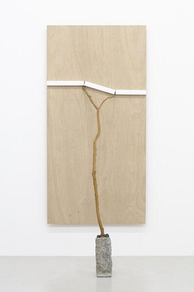 Kishio Suga 菅木志雄, '景測化 Measure of Scenery', 2015