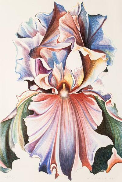 Lowell Nesbitt, 'Iris', 1981