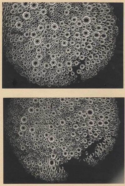 Katalin Nádor, 'Foam Bath on Dial—Bubbles in Movement [Óralapon habfürdo, buborék]', 1971