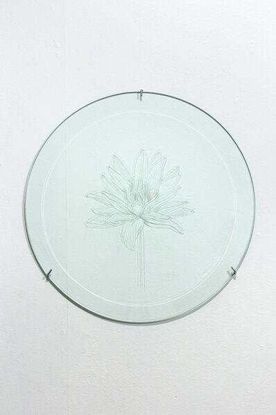 Anastasia Potemkina, 'Nymphaea caerulea', 2019