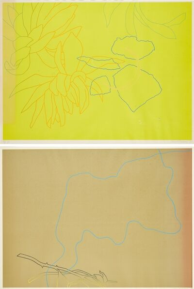 Derrick Greaves, 'Flower Pieces (two works)', 1970