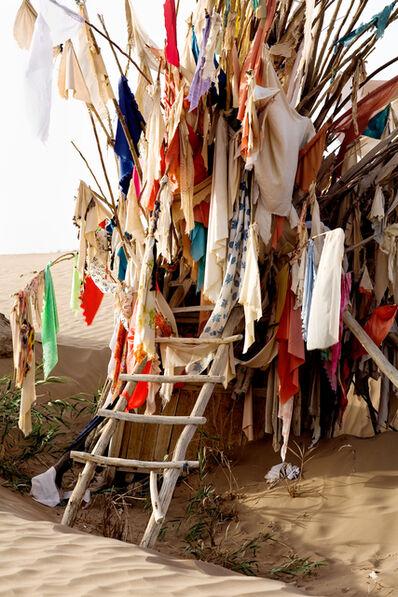 Lisa Ross, 'Unrevealed, Site 3 (Ladder)', 2009