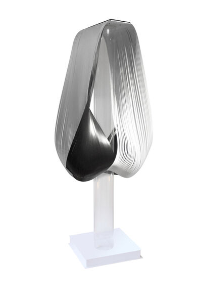Solange Heilenkötter, 'REFLEXION Black & White IV', 2016